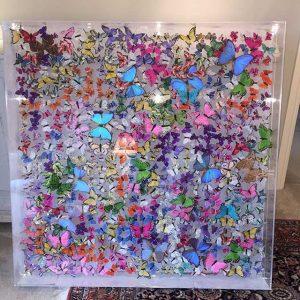 Butterfly Art Blog 2
