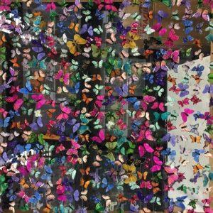 butterfly-art-blog-17a