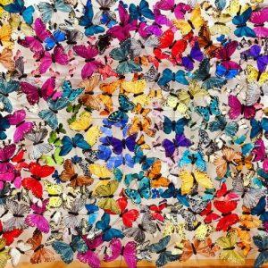 butterfly-art-blog-17d