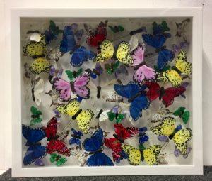 butterfly-art-blog-24a