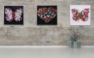 butterfly art blog 41