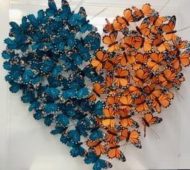 butterfly-art-blog-44c