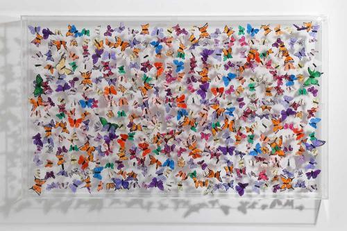 Butterfly-art-15