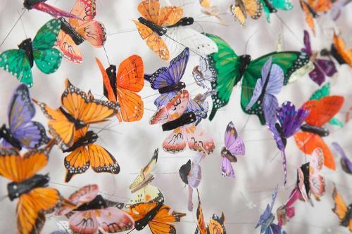 Butterfly-art-21