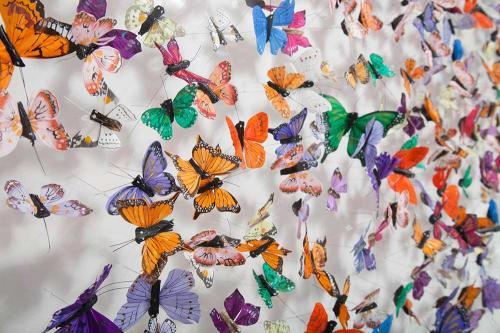 Butterfly-art-29