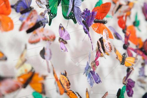 Butterfly-art-31