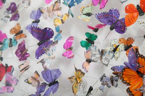 Butterfly-art-50
