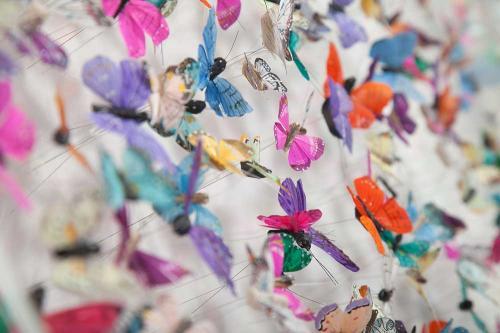 Butterfly-art-56