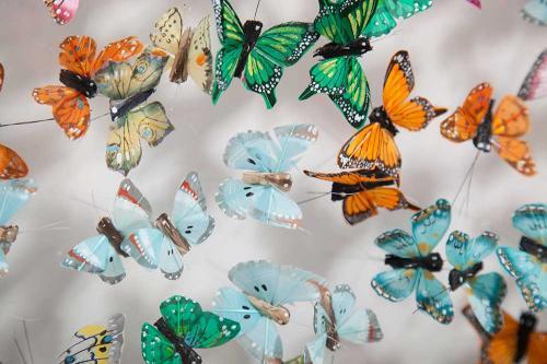 Butterfly-art-72
